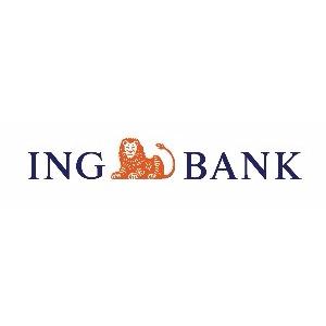 ING BANK SULTANGAZİ ŞUBESİ